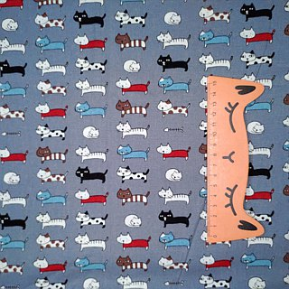 Playing Cats Decompression Belt Camera Belt Uke Lili Camera Strap
