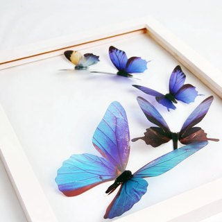 HomePlus 3D STREAK BUTTERFLY - BLUE