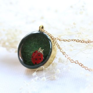 Hot pendant ladybug on grass.