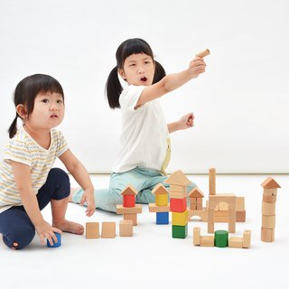 Flip building set Transformable Blocks
