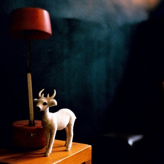 Film Photography Postcard - Light Series - Dear Deer