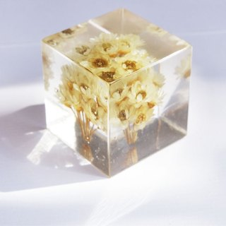 Yellow flowers - dried flowers three-dimensional square furnishings