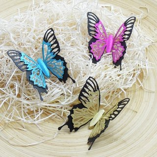 [Desk + 1] Cui Yang butterflies - magnet three Value Pack