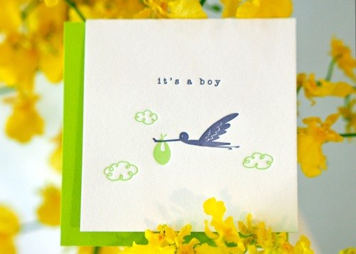 Delivery Stork - Letterpress Baby Boy Announcement Mini Card