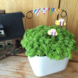 [Potted] Park tour Carnival (succulent healing office small objects) gift graduation gift