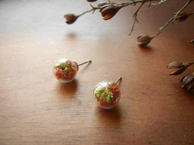 *coucoubird*Christmas flower earrings / anti-allergic ear stylus