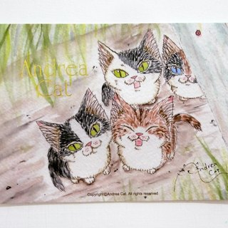 Andrea Cat- Wealthy Street cat kitten postcard - Bruce and brother and sister