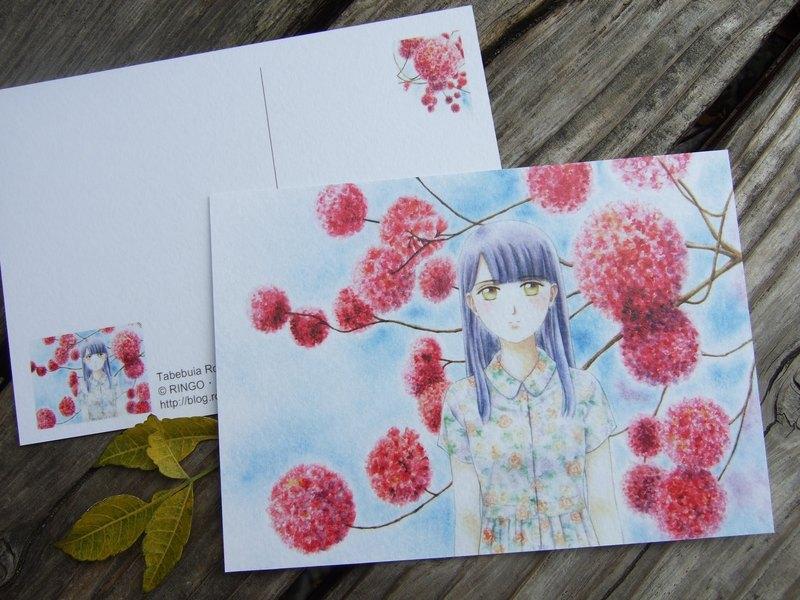記憶中的洋紅 粉紅桃紅色洋紅風鈴木 少女手繪水彩風格明信片