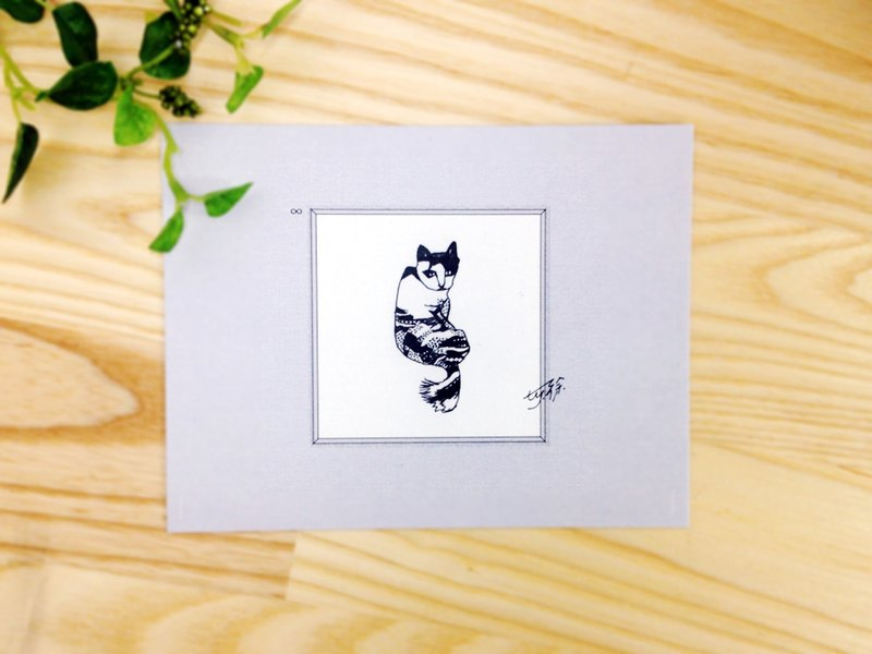 Unique, Stray Cat:Postcards Cards/ A card= A donation