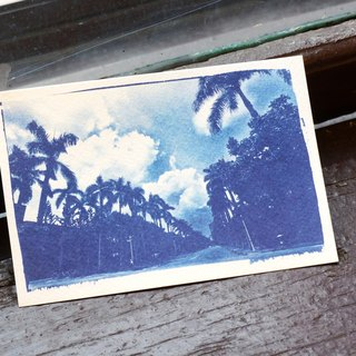 NTT blue sun postcard - Coconut Grove