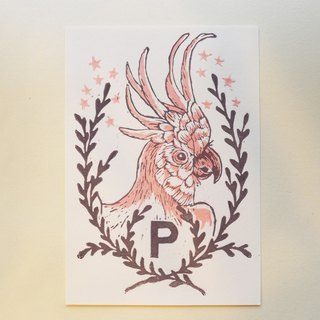 """P is for Parrot 'manual version printed postcards - Parrot (abc letters and postcards)"