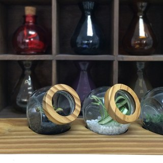 Greenology wood cover glass with wood base