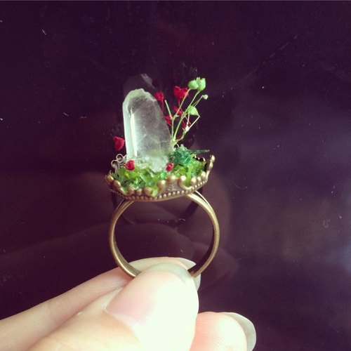 Photo of one thing - Mini Crystal Bonsai Ring - A section - white crystal really dried forest