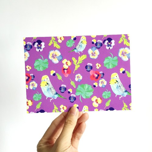 Budgie Pattern Postcard, floral pattern, pansy flower