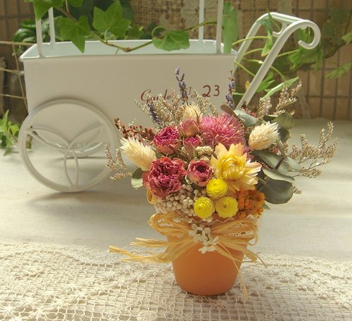 Dried flower pots Thao wedding birthday gift small things