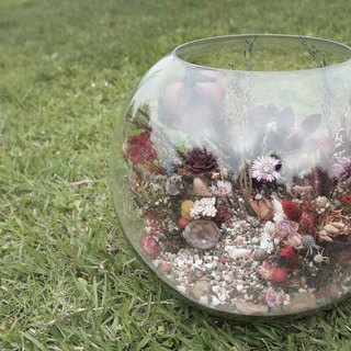 玻璃生態缸 Dry Flower Terrariums