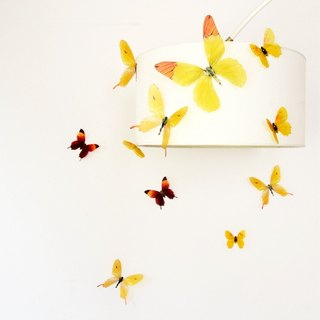 HomePlus 3D STREAK BUTTERFLY - Yellow