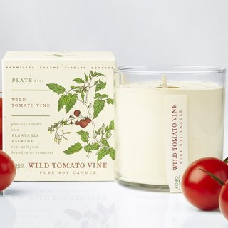 KOBO series of non-genetically modified soybean seeds fragrance candle - vine tomatoes