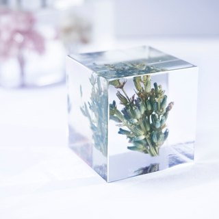 Lavender - three-dimensional square dried flowers decoration