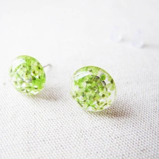 * Rosy Garden * green Queen Annes lace flower resin earrings