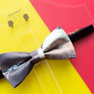 Style 0009 Bowtie - Modern Boys Bowtie, Toddler Bowtie Toddler Bow tie, Groomsmen bow tie, Pre Tied and Adjustable Novioshk