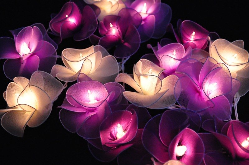 20 Purple Flower String Lights for Home Decoration, Wedding, Party, Bedroom,Patio and Decoration