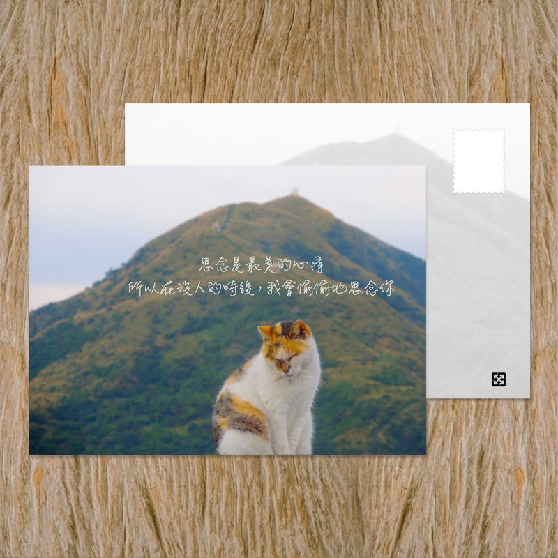 Postcard / Secretly miss you / Buy 10 get 1 free / Taiwan positive energy corner inspirational series