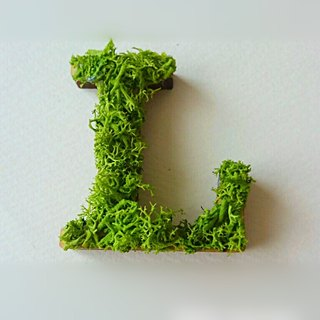 "Wooden alphabet objects (Moss) 5cm ""L"" × 1 point"