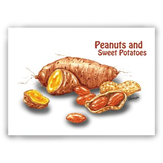 Hand-painted illustrations of universal cards / cards / postcards / illustrations card - sweet potatoes peanut potatoes food