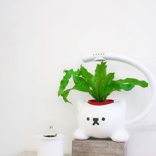 Light up the cat __ Cat shape LED plant cultivation lamp