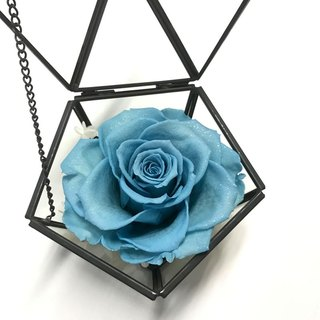 Pentagon diamonds withered glass jewelry box water blue diamond rose last group