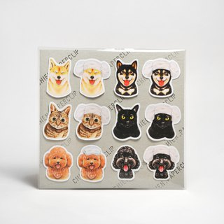 Matte waterproof stickers - little cats and dogs