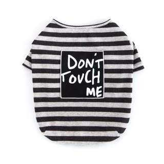 #bff attitude SloganT shirt _ gray and black stripes