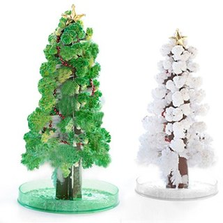 Paper Tree Blossoms - Huge Christmas Tree Evergreen