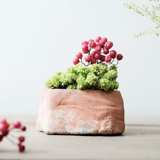 Christmas hill Christmas hill - meat dried flower cement DIY material package Potted pepper fruit years grass