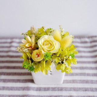 Still looking forward to paradise - do not wither dry table yellow - Preserved & dried flower little table flower (yellow)