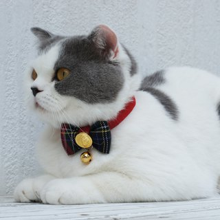 Cat collar, bell tie, scottish plaid