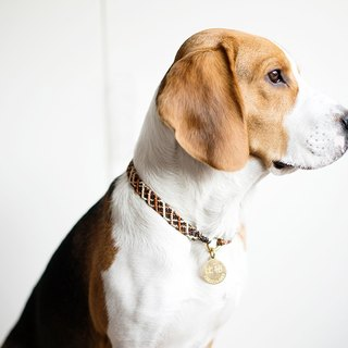 """Vibrant"" / Pet Custom /**Medium / Large Dog**""Suspended Sale"" Tag Brand Customized Dog Meow Meat Brass Hand Marker Brand Name Dog Brand Knit Collar Collar Collage"