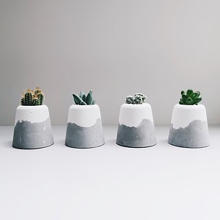 SNOW VOLCAN Xiaoxue Volcano │Cactus/Succulent/Air Pineapple Cement Pot (with plants)
