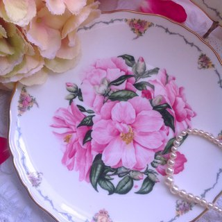 British Royal albert hand-painted 1990 hand-painted limited edition cake tray snack plate inventory brand new