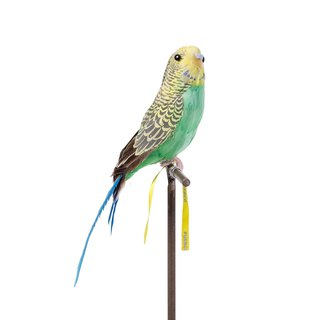ARTIFICIAL BIRDS Budgie Green Handmade Animal Styling / Green Parrot