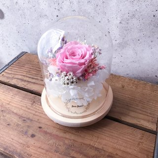 Happy choice - pink rose forever night light / ROSEAMOR / rose / Spain does not fall hydrangea / ornaments