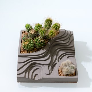 Cement base model - cactus plant