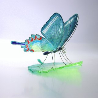 Glass butterfly crows Ageha on leaf