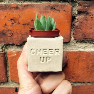 Cheer up Come on! ! Fleshy magnet pot