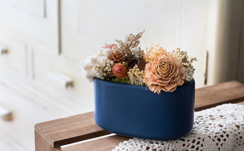 [Walking in the forest] Dry potted plants // Sun Rose // Home furnishings // Opening gifts