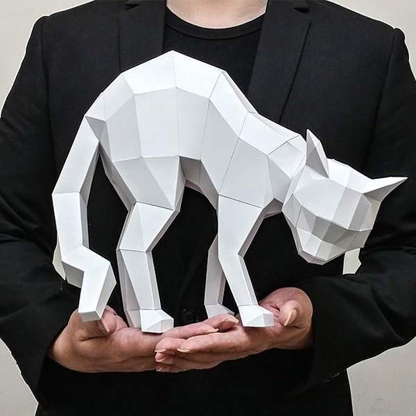 3D paper model _ timid cat _DIY Kits_ hand-made combination