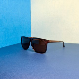 Polarized Sunglasses│Brown Color│Brown Lens│UV400 Protection│2is Edgar C