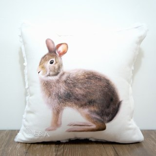Taiwan Hare Pillow - Male Rabbit - 30cm