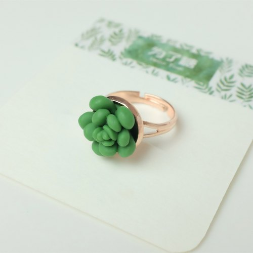 [Greenhouse] more meat fresh gift jewelry rings jewelry